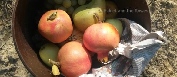 pomegranates melograni