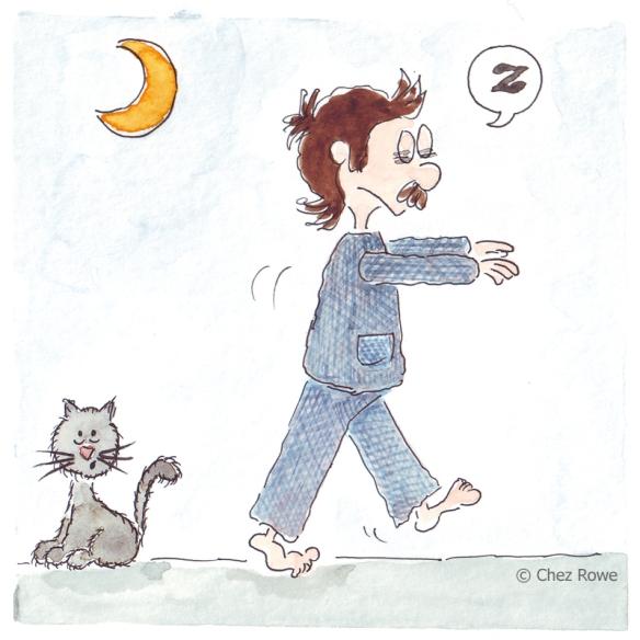 domesticity zzzzz parasomnia somnambulism sleepwalking
