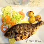 Lisbon Fish
