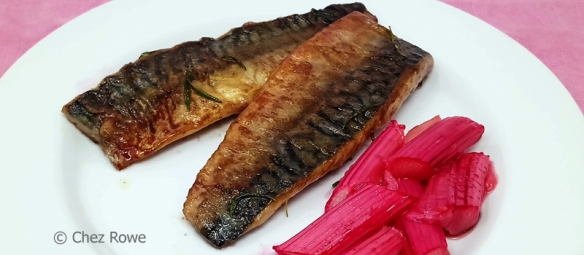 Mackerel and rhubarb – sgombro e rabarbaro